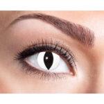 Kontaktlinser Eye Catcher