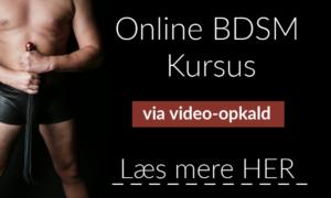 online bdsm kurser