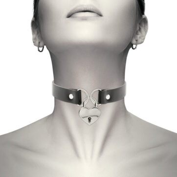 halsbånd med hjerte og lås